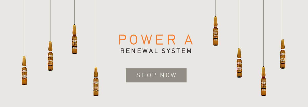 Sarah Chapman Power A Renewal System